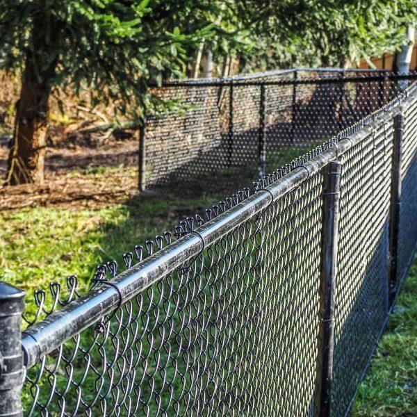 Modesto-fence
